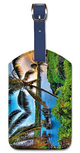 Leatherette Luggage Tag Baggage Label - Where da Coconuts Grow by Randy Jay Braun
