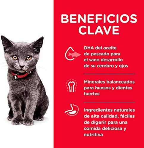 Hill's Science Diet, Alimento para Gatito (Kitten) Indoor, Seco 4