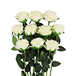 NICEAO Gold Rose 24K Artificial Flowers Dipped Rose Gold Plated Rose with Transparent Stand for Lover, Mother, Girlfriend, Gold Dipped Rose (Pink)