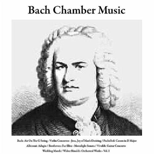 Bach: Air On the G String/Violin Concertos/Jesu, Joy of Man's Desiring / Pachelbel: Canon in D Major / Albinoni: Adagio / Beethoven: Fur Elise/Moonlight Sonata / Vivaldi: Guitar Concerto / Wedding March / Walter Rinaldi: Orchestral Works, Vol. I (Bach Air On The G String Guitar)