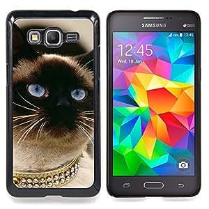 """Gato siamés Oro Blue Eyes Birman"""" - Metal de aluminio y de plástico duro Caja del teléfono - Negro - Samsung Galaxy Grand Prime G530F G530FZ G530Y G530H G530FZ/DS"""