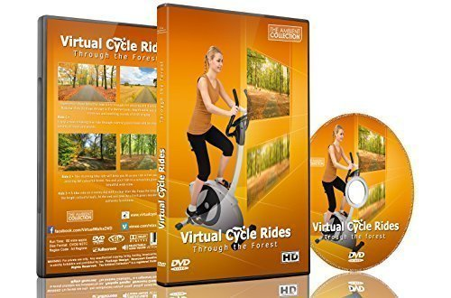 de6ee03d19a Virtual Cycle Rides - Through the Forest - For Indoor Cycling