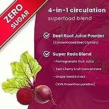 Beet Root Powder Circulation Superfood