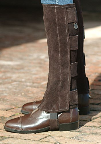 - Ovation - Ladies Suede Half Chaps w/Velcro , Brown , Small