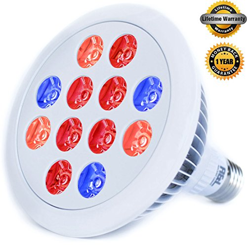 LED Grow light bulb - Premium Greenhouse Hydroponics for organic indoor gardening and marijuana - Lifespan Warranty, High Luminosity, Wide Coverage - Let your plant to touch the sun - Grape Design Plant Stand