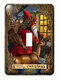 3dRose lsp_172757_1 Santa and Reindeer Facing Window Decorative Gold Leaf and Star Border - Single Toggle Switch
