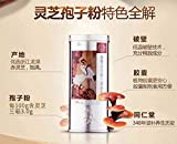 Chinese Herb TongRenTang Lingzhi Reishi Mushroom同仁堂 破壁灵芝孢子粉胶囊 0.35g/粒90粒/盒