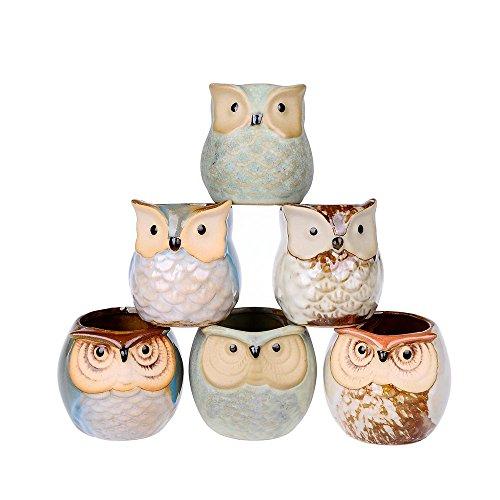 6 Pcs Mini Small Ceramic Owl Succulent Plant Pot Flower Planter Holder Cactus Planter Pot Flower Pot Container Planter