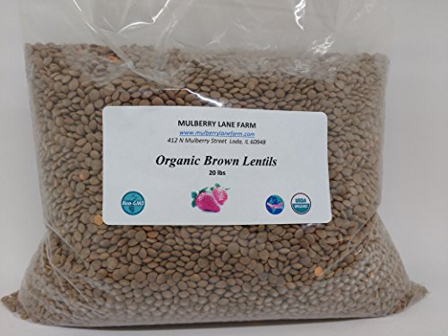 Brown Lentils 20 lbs (Twenty pounds) USDA Certified Organic Non-GMO, BULK by Mulberry Lane Farms