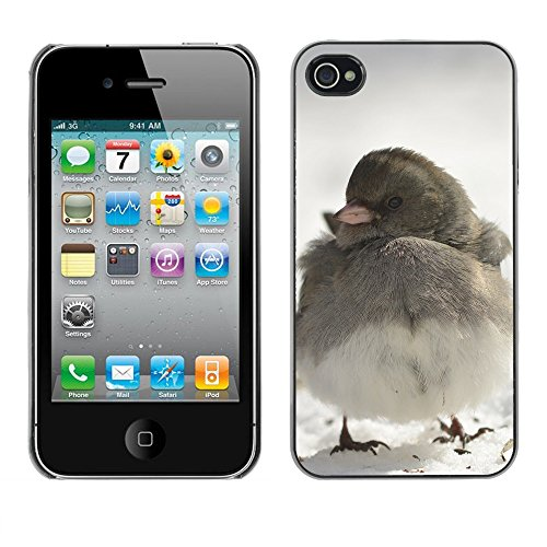Premio Sottile Slim Cassa Custodia Case Cover Shell // F00011896 oiseau // Apple iPhone 4 4S 4G