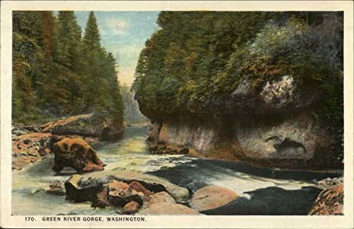 Leland Diamond (Green River Gorge Black Diamond, Washington Original Vintage Postcard)