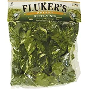Fluker's Pothos Repta Vines for Reptiles and Amphibians 9