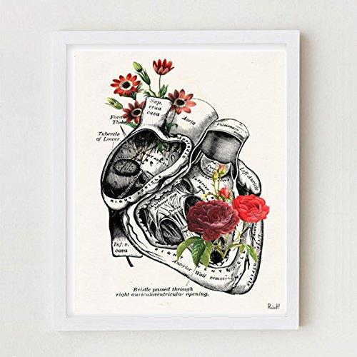 MS Fun Human Anatomy Flower Heart Canvas Art Print 8x10,Ready to Hang (Fun Poster)