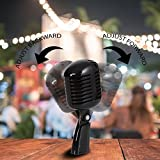 Classic Retro Dynamic Vocal Microphone - Old