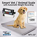 Prime Vet Scale/Animal Scale/Small Livestock Scale with Smart Auto-Save Software 44x22x2