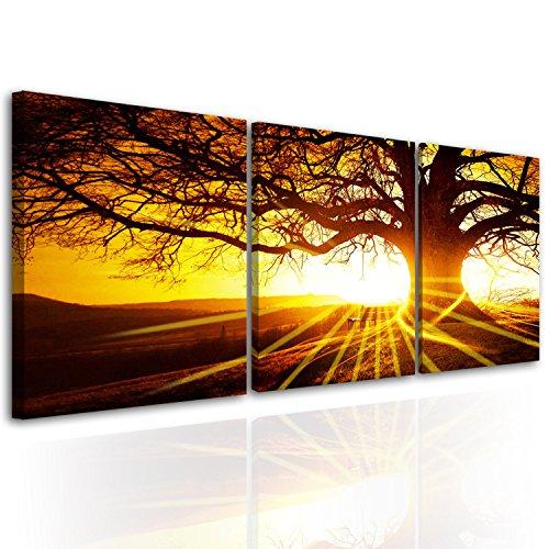 30 Framed Print - 4