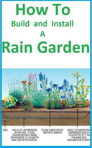 Rain Gardens - 6