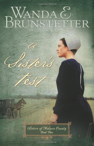 A Sister's Test (Sisters of Holmes County, Book 2) pdf epub