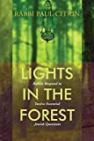 Lights in the Forest: Rabbis Respond to Twelve