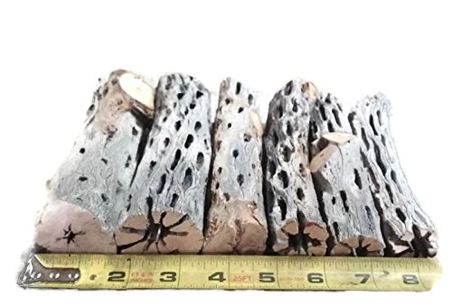 6'' All Natural Cholla Wood Organic Untreated Aquarium Driftwood Decoration and Chew Toy Shrimp Crab Pleco Cichlid Nano Tanks Birds 1, 2, 3, 4, 5, 10, or 25 Pieces (3 Pieces, X-Large 6 inch)