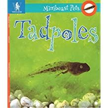 Tadpoles (Minibeast Pets)