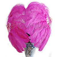Hot-Fans A pair of hot pink Single Layer Ostrich Feather Fan 24x 41 with Travel leather Bag