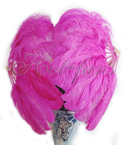 Hot-fans Single Layer Ostrich Feather Fan 24''x 41''for Pair,Hot Pink by Hot-Fans