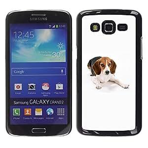 TopCaseStore / la caja del caucho duro de la cubierta de protección de la piel - Beagle Foxhound Dog Pet White - Samsung Galaxy Grand 2 SM-G7102 SM-G7105