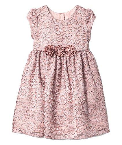 Glitter Dot Dress (MIA and Mimi Toddler Girls' Lace Dress Glitter Dot 5T)