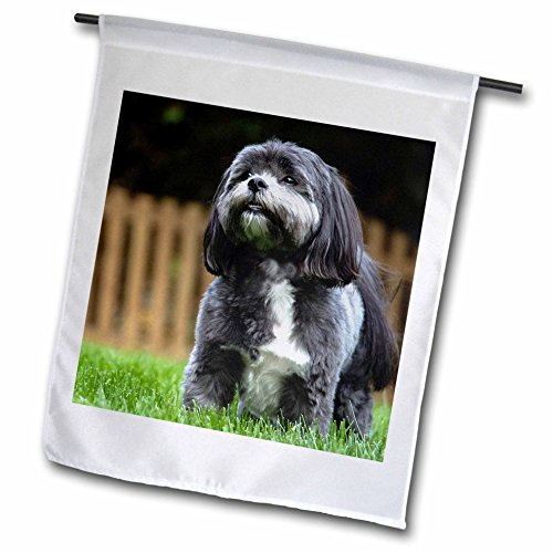 Shih T-shirt Sweatshirt - 3dRose RinaPiro - Dogs - Chih Tzu. Black and white. Popular breed. Best friend. - 12 x 18 inch Garden Flag (fl_238371_1)