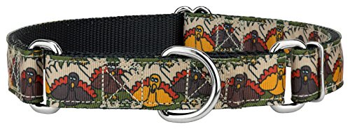 Country Brook Design Thanksgiving Pilgrim Turkey Ribbon Martingale Dog Collar - Medium Limited Edition