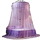 Can You Get Bigger Than a King Size Bed Staringirl Luxury Princess Pastoral Lace mosquito nets Round Hoop butterfly Canopy Net Crib Bedroom Decor (Purple)
