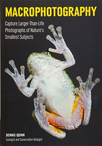 Macrophotography: Create Larger-Than-Life Photographs of Nature's Smallest Subjects (Best Macro Lens For Insects)