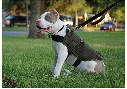 MD Group Dog Harness Army Tactical Dog Vests Hunting Training Molle Vest Outdoor Clothes by MD Group (Image #6)