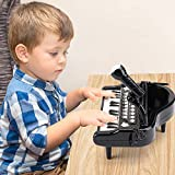 nicknack Piano Toy Keyboard for 1 Year Old Baby