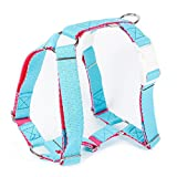 PPARK BUTTERFLY STEP-IN HARNESS WITH DUAL QUICK RELEASE (Medium, Blue/Pink)