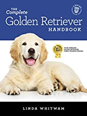 Golden Retriever Husky Mix All You D Want To Know About The Goberian