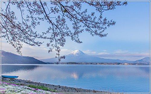 (Mount-Fuji-Lake-Kawaguchi-Japan-twigs-flowers Postcard Post card)