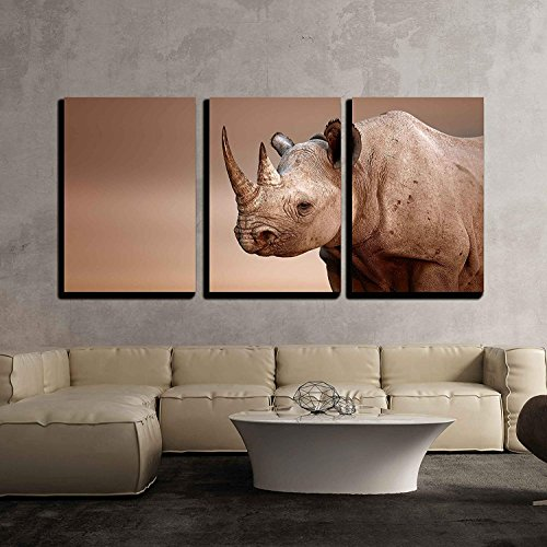 Black Rhinoceros Portrait Diceros Bicornis Salt Pans of Etosha National Park Namibia x3 Panels