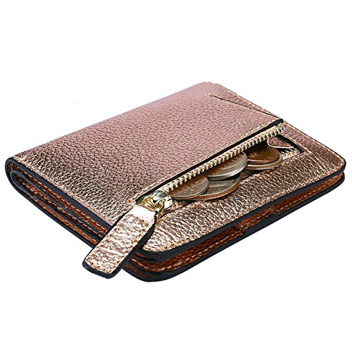 (Itslife Women's Rfid Blocking Small Compact Bifold Leather Pocket Wallet Ladies Mini Purse with id Window (Lichee Champagne Gold))