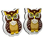 WEKOIL Magnetic Dry Erase Erasers Whiteboard Eraser Chalkboard Eraser Cute Owl Erasers with Felt for Students Teachers Classroom Office Home Pack of 2
