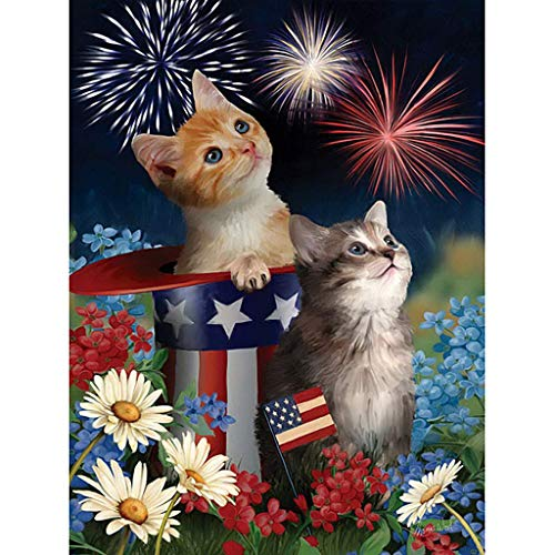 DIY 5D Diamond Painting by Number Kit for Adults,Full Drill Fireworks Cat Rhinestone Embroidery Cross Stitch Supply Arts Craft Canvas Wall Decor,11.8×15.7in -