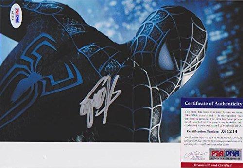 Stan Lee Spider-Man 17 Autographed Photo PSA/DNA