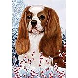 Cheap Best of Breed Winter Berries Full Size Flag Blenheim Cavalier King Charles Spaniel