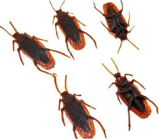 Insectos Cucaracha realista de simulación de plástico Cucaracha ...