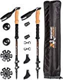 3K Carbon Fiber Trekking Poles for Hiking - Collapsible, Ultralight Walking Stick Set,Lightweight Travel Bag & Accessories, with Natural Cork Grips & Super Sturdy Tungsten Carbide Tips