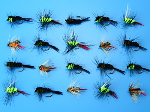 FidgetGear 40Pcs Woolly Worm Montana Stonefly Nymphs Trout Fly Fishing Flies Lures H013