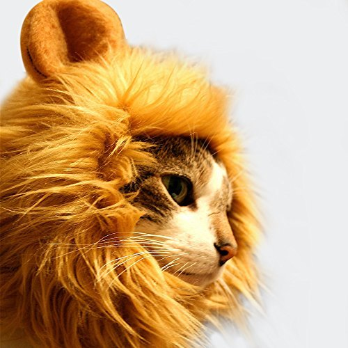 [GABOSS Lion Mane Wig Costume for Cat, Little Dog Halloween Dress with Ears Pet Festival Party Fancy Hair Cat Clothes, Gold Brown] (Lion Dog Halloween Costumes)