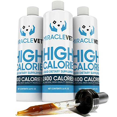 Miracle Vet High Calorie Weight Gainer for Dogs & Cats - 2,400 Calories (1 Bottle - 16 oz) (Best Weight Gainer For Dogs)