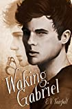 Waking Gabriel (Sleeping Tom Book 2)